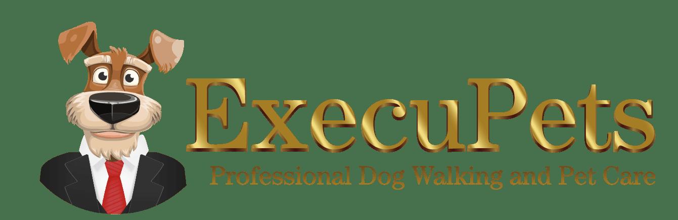 Dog Walker Pet Sitter Jobs